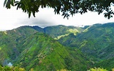 The Blue Mountains Jamaica: A Quick 'Peak' – Life of a ...