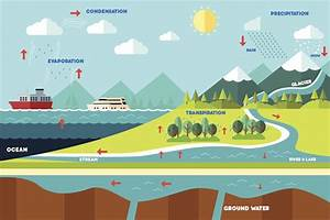 A Simple Guide To The Steps Of The Water Cycle