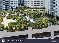 Roof top garden above car park in new Singapore public