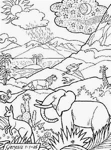 dibujo para colorear e imprimir de la creacion de Dios Material para maestros, Planeaciones