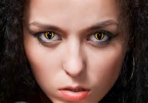 yellow cat eye contacts contact lenses costumes optical options