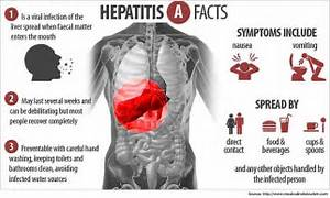 What is Hepatitis A disease and its homeopathic prevention ... Hepatitis A
