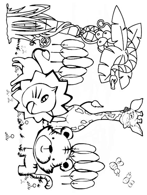 printable coloring pages jungle animals coloring page