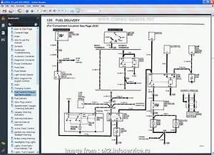 Bmw  Starter Wiring Diagram Best Bmw  Wiring Another Blog
