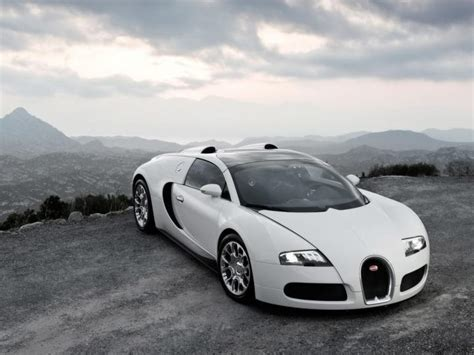 And White Bugatti by White Bugatti Bugatti Veyron Photo 5736054 Fanpop
