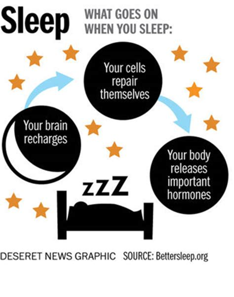 Image result for importance of sleeep