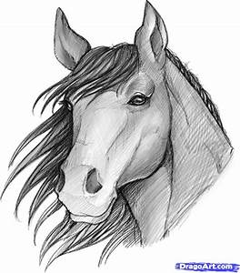 image of a sketched anime | how to sketch a horse ...