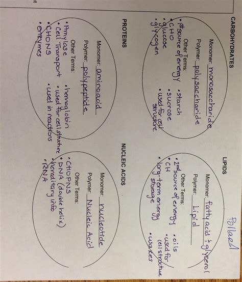 science biology unit 1 biomolecules