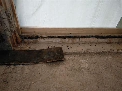 mauer gegen feuchtigkeit abdichten pfifferlinge wie am besten zubereiten matratzenarten wie