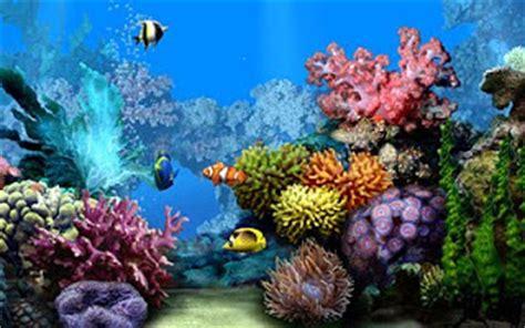 Living Marine Aquarium 2 Animated Wallpaper - free wall paper windows xp vista and 7 most