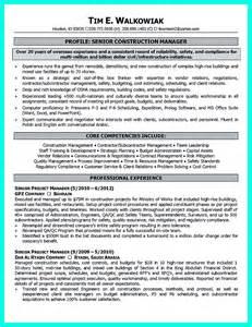 Real Estate Development Project Manager Resume by Resume Exles For Beginners Nursing Resume Skills