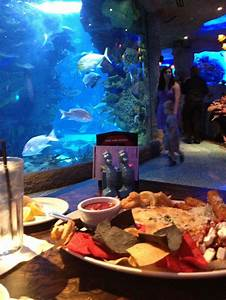 Underwater Aquarium Restaurant! Nashville, TNImages Frompo