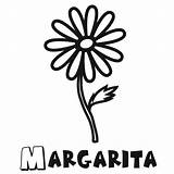 Margarita Glass Coloring Pages Template Dibujo sketch template