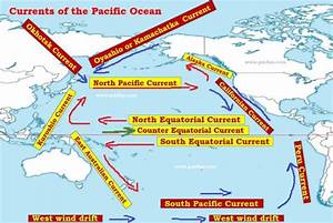 Pacific Ocean Currents   Phytoplankton and Fishing   PMF IAS
