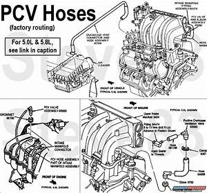 1995 Ford F150 5 0 Engine Diagram Rubber Vacuum System Replacement  5 05 8 Efi