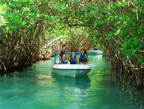 Boat Ride Cancun by Jungle Speedboat Tour From Cancun Attractiontix