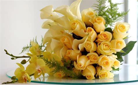 bedeutung gelbe die rosenfarbe bedeutung beherrschen sie die blumensprache
