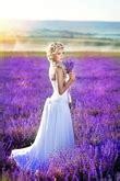 sussex wedding magazine helping brides  grooms
