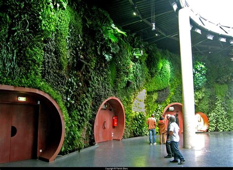 blanc vertical gardens growing walls vertical gardens the work of patrick blanc archre think