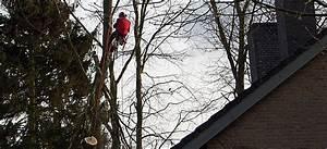 Bäume Beschneiden Jahreszeit : hagarte gartenpflege ~ Yasmunasinghe.com Haus und Dekorationen