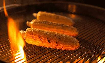Grilled Gifs Vegetables Grilling Corn Barbecue Grill