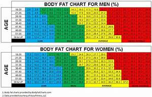 The Body Fat Charts Displayed Show Body Fat Percentages