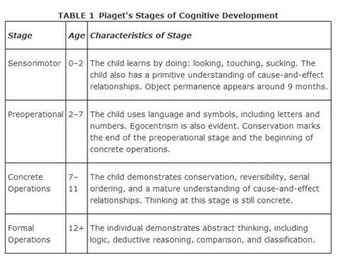 piagets model  cognitive development