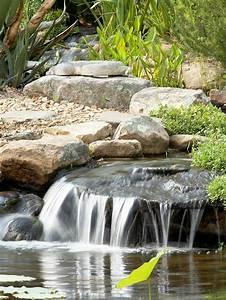 Gartenteich Mit Wasserfall : gartenteich neu anlegen tipps f r erfolgreichen wassergarten umbau ~ Orissabook.com Haus und Dekorationen