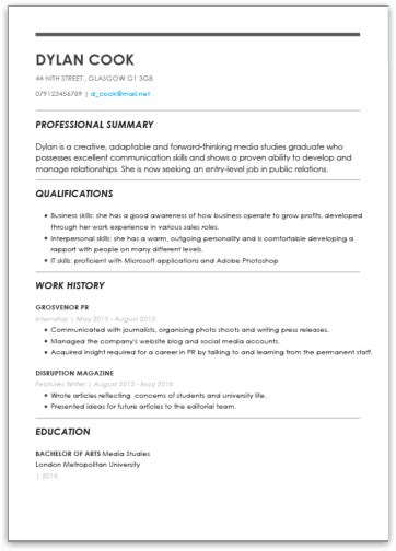 Basic Cv by The Best Cv Templates By Industry And Titles My