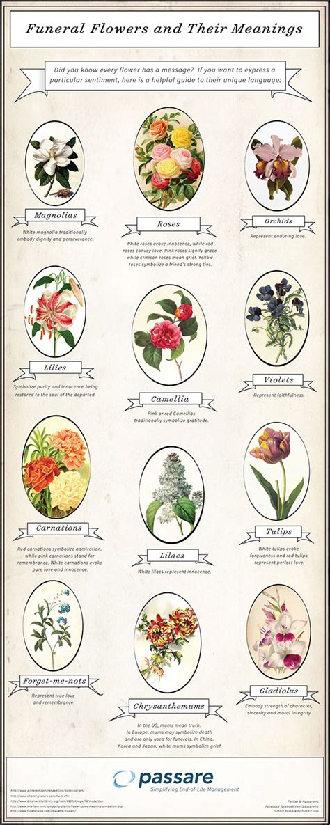 flower arrangement meanings funeral flowers and their meanings on behance