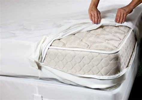 mattress cover bed bugs best bed bug mattress covers encasements pestseek