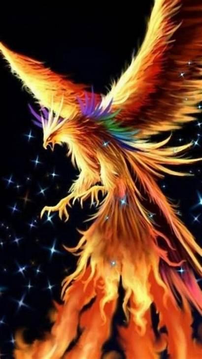 Phoenix Phone Dark Wallpapers Bird Fantasy Mobile