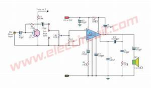 Do It By Self With Wiring Diagram  Audio Kit 810 Circuit