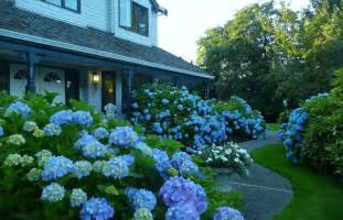 blue and brown bathroom ideas a blue garden traditional landscape vancouver