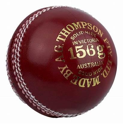 Cricket Ball Regulation Transparent Pluspng