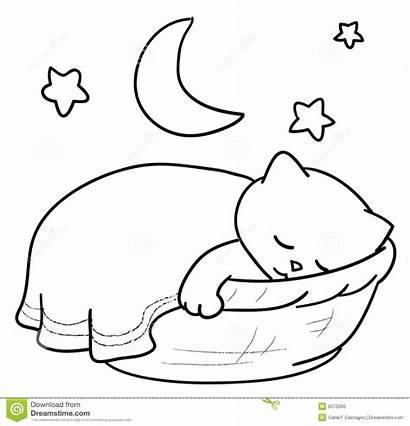 Sleeping Cat Clipart Sleep Basket Vector Cartoon