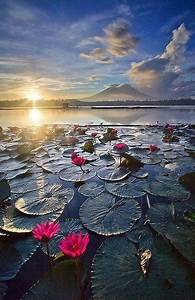 sunrise, in, sampaloc, lake, , laguna, , phillippines