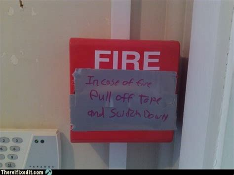 Spider Fire Alarm Meme - in case of fire randomoverload