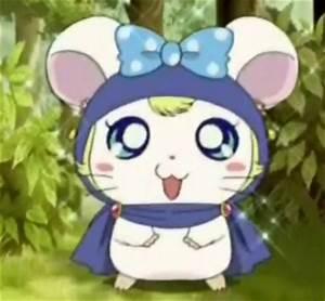 Hamtaro screenshots - Hamtaro Image (28282546) - Fanpop