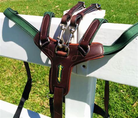 breastplate amerigo horse combination custom breast plates tack equipment