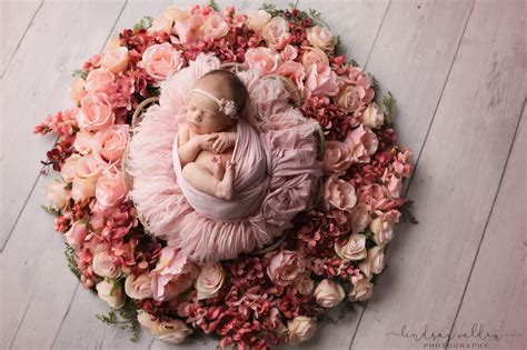 newborn girl sessions  flowers fort worth newborn