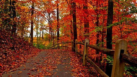 Beautiful Autumn Wallpapers by Beautiful Autumn Wallpaper 69 Wallpapers Hd Wallpapers