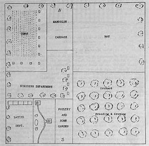 Plan For One Man, Ten Acre Poultry Farm - The Poultry Pages