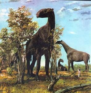 1364 best prehistoric creatures images on Pinterest ...