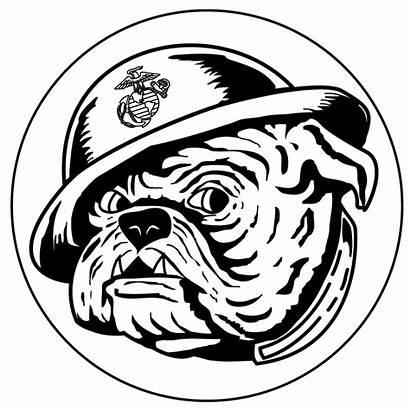 Devil Dog Clipart Bulldog Usmc Drawing Marines