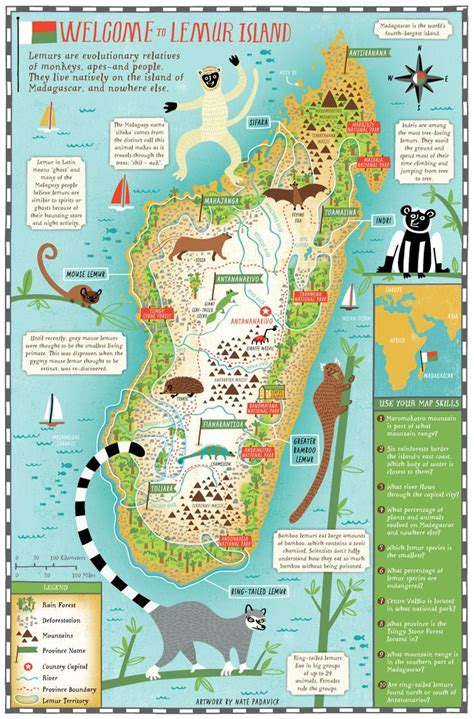 scholastic lemur map  madagascar studio sss