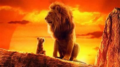 Lion King 4k Wallpapers Movies Disney Ru