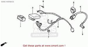 Honda Xr100r 1993  P  Usa Wire Harness