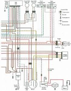 Polaris Sportsman 500 Wiring Diagram 1989