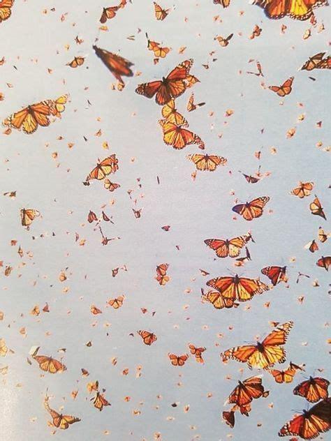 15 trendy orange aesthetic wallpaper collage aesthetic